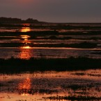 Another Sunset over Stiffkey Marshes