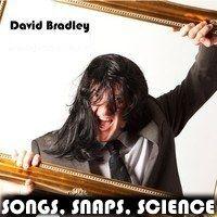 david-bradley-wig